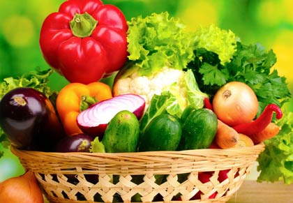 Best Therapeutic Diets Program in Gurgaon (Gurugram) and Delhi NCR.